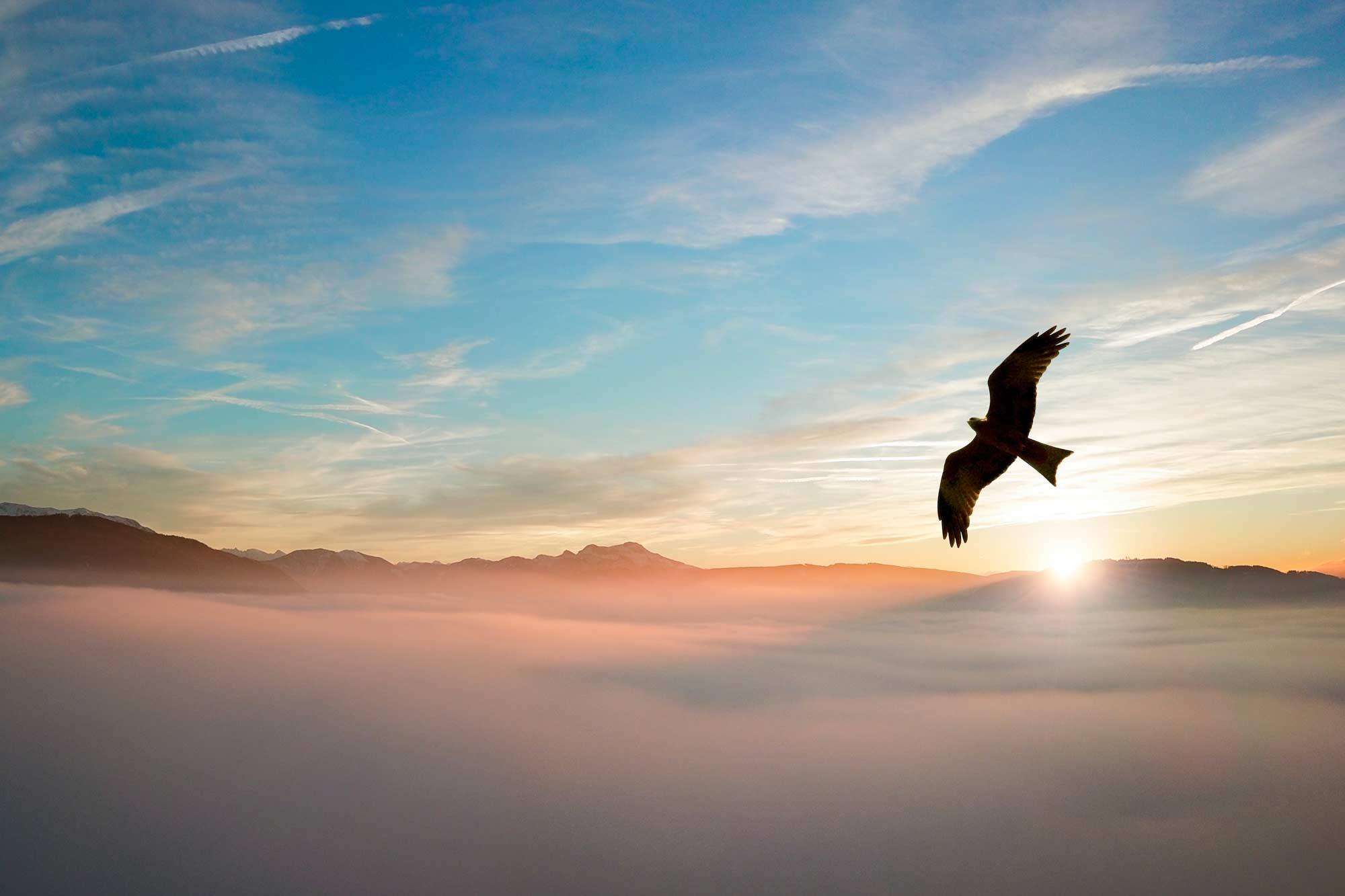 Samedi 5 décembre – Journée Éveil & Spiritualité – Schiltigheim